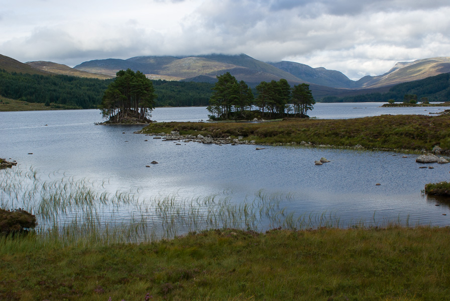Near Rannoch Station 2