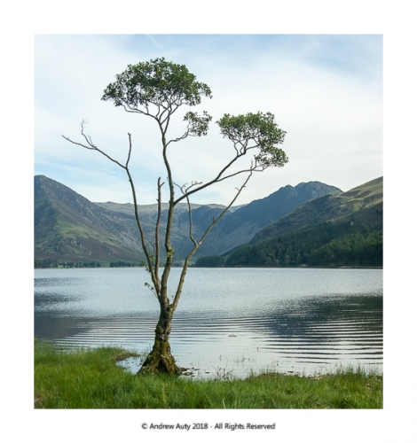 buttermere3018